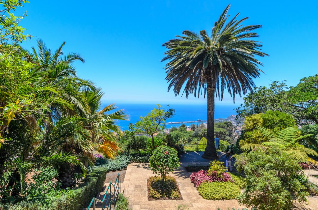 Exotic landscape in the city of Funchal